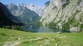 Fischunkel Alm mit Obersee und Watzmann