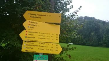 Gaisberg Climb the goas