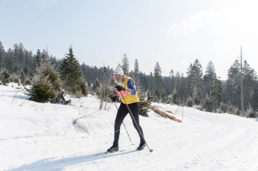 Weisheit auf Ski