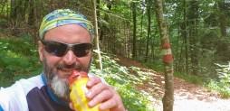 irgendwo im Wald