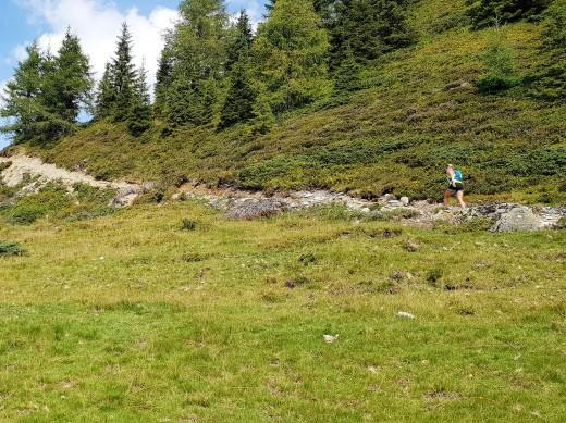 TT= Traum Trail