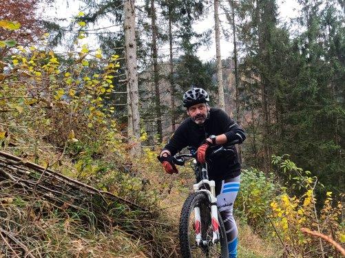 Endstation Wald